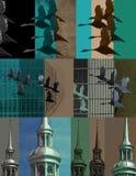 Steeple i ptaków fotografii montaż Fotografia Stock
