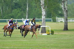 Steeplechase in Lysa nad Labem Royalty Free Stock Images