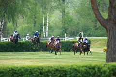 Steeplechase in Lysa nad Labem Stock Photos
