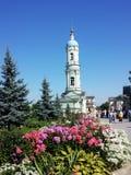 Steeples Optina церков Стоковая Фотография RF