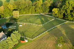 Steers in Pasture Aerial. An aerial view of some steers in a pasture stock image
