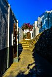 Steet av byn Lindos traditionella vita hus och blommor på taken fotografering för bildbyråer
