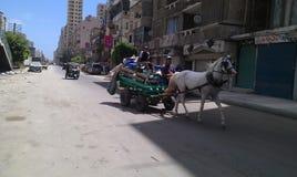 Steet of horse egypt Alexandria people Stock Photos