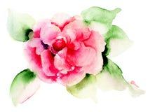 Steg blomman Arkivfoto