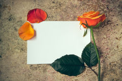 Steg blomman, kronblad, och vitt töm papper på en träbakgrund Royaltyfria Bilder