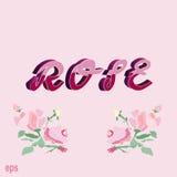 , Steg card rosa färger, tappning, bakgrund, gåvan, förälskelse, ungdom, rosa färg Royaltyfria Foton