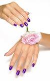 steg den rosa purplen för manicuren royaltyfria foton