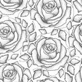 Steg den sömlösa modellen för vektorn med prickigt blommor och sidor i svart på den vita bakgrunden Blom- bakgrund med öppna roso Fotografering för Bildbyråer
