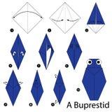 Steg-för-steg anvisningar hur man gör origami A den metalliska trä-borrning skalbaggen stock illustrationer
