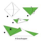 Steg-för-steg anvisningar hur man gör origami en gräshoppa Royaltyfria Bilder