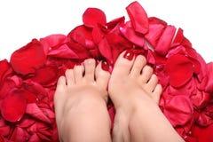 steg foten petals Fotografering för Bildbyråer