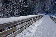 Steg im Winter Lizenzfreie Stockbilder