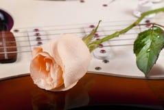Steg med daggdroppar på gitarren arkivbild
