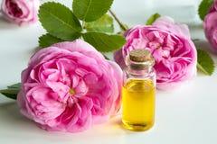 Steg nödvändig olja: en flaska av olja med steg blommor Arkivbilder