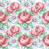 Steg och kamomillblommahanden som drar den sömlösa modellen, blom- bakgrund för vektorn, blom- broderiprydnad Utdragna knopprosa  Arkivfoto