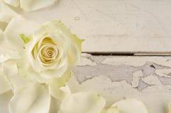 Steg och kronblad över träbakgrund Arkivbilder