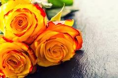 Steg orangen steg steg yellow Flera orange rosor på granitbakgrund Royaltyfri Foto