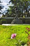 Steg på trädgården Fotografering för Bildbyråer