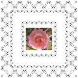 Steg retro älskvärt för blom- ram i dekorativ ramtappningstil vektor illustrationer