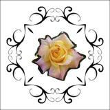 Steg retro älskvärt för blom- ram i dekorativ ramtappningstil stock illustrationer
