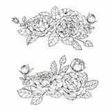 Steg skissar blommor som drar och, med linje-konst Royaltyfri Foto
