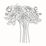 Steg skissar blommor som drar och, med linje-konst Royaltyfri Fotografi