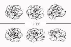 Steg skissar blommor som drar och, med linje-konst Arkivbild
