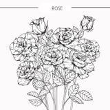Steg skissar blommor som drar och, med linje-konst Royaltyfria Foton