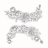 Steg skissar blommor som drar och, med linje-konst på vit backgroun Royaltyfria Foton