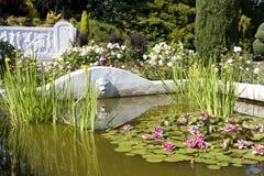 Steg trädgården arkivbilder