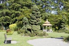 Steg trädgården royaltyfri fotografi