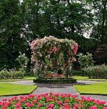 Steg trädgården Royaltyfria Foton