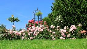 Steg trädgården med blåa Ske fotografering för bildbyråer