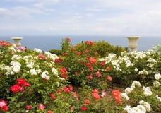Steg trädgården med vaser och havet Arkivbild