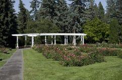 Steg trädgårds- Spokane Fotografering för Bildbyråer