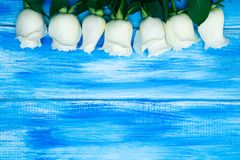 steg white En bukett av delikata rosor på en träblå bakgrund Ställe för text, närbild Romantisk bakgrund för vår royaltyfria foton
