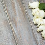 steg white En bukett av delikata rosor på en vit bakgrund Ställe för text, närbild Romantisk bakgrund för vårferier arkivbild