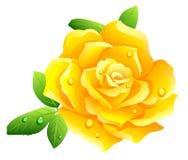 steg yellow royaltyfri illustrationer
