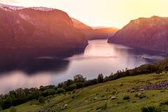 Stegastein Aurland Fjord Norway. During sunset Stock Photos