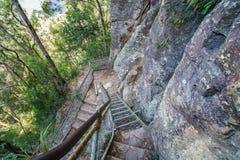 Stege i det jätte- trappaspåret, blåa berg, Australien 1 arkivfoton