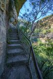 Stege i det jätte- trappaspåret, blåa berg, Australien 6 royaltyfri bild