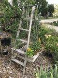 Stege med växter royaltyfri foto