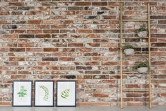 Stege med växter royaltyfria foton