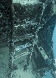 Stege på skeppsbrott som täckas av korall i undervattens- bild royaltyfri fotografi