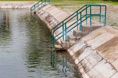 Stege till ett damm i natur arkivfoto