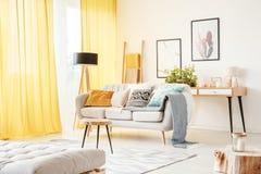 Stegeanseende bak soffan royaltyfri foto
