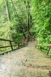 Stegen falls2 Arkivfoto
