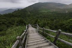 Stegen från berget går ner till jordningen arkivbild