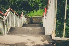 Stegen i parkerar bland gräsplaner/nedstigning från en stege i parkerar royaltyfria bilder