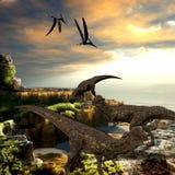 Stegoceras Dinosaurs Stock Photo